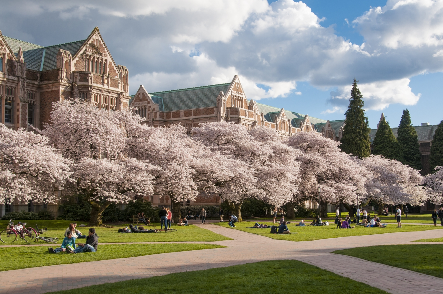 How to Get Into University of Chicago  Admissions Requirements University of Chicago Law School